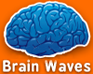 Brain Waves