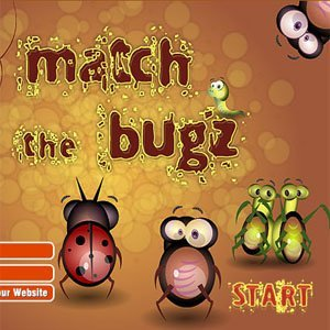 Image Match The Bugz