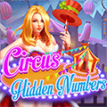 Circus Hidden Numbers
